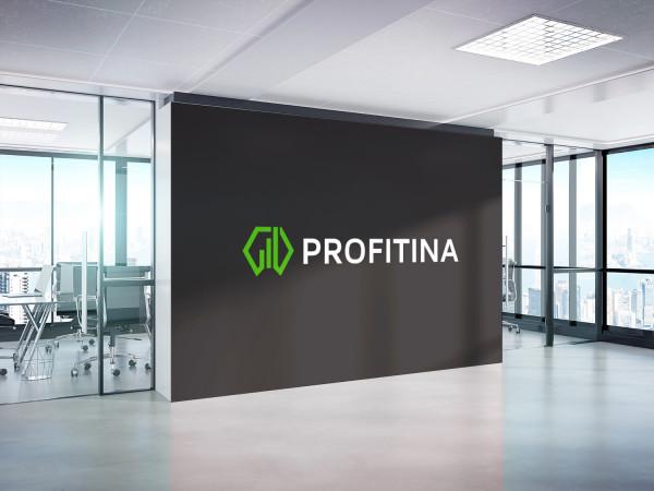 Sample branding #1 for Profitina