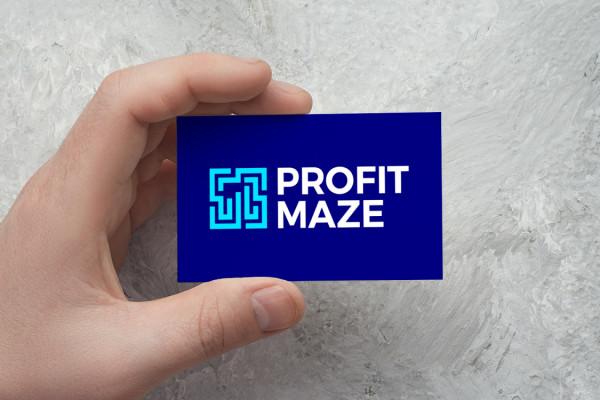 Sample branding #1 for Profitmaze
