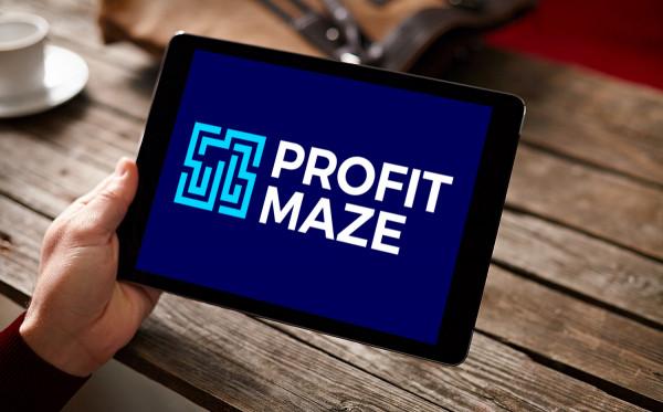 Sample branding #2 for Profitmaze