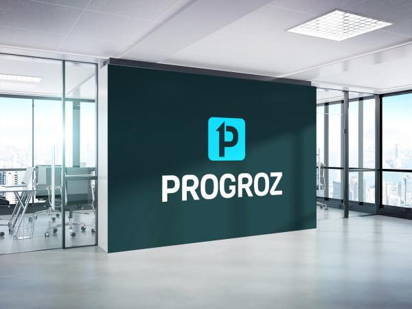 Sample branding #2 for Progroz