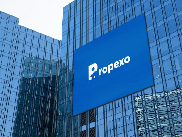 Sample branding #3 for Propexo