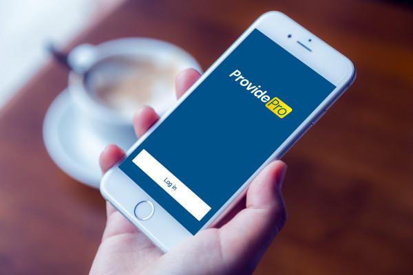 Sample branding #2 for Providepro