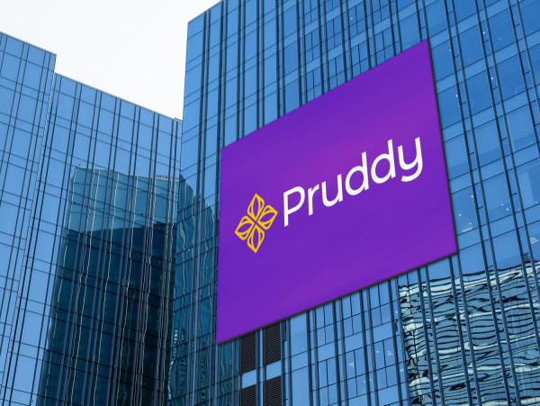 Sample branding #1 for Pruddy