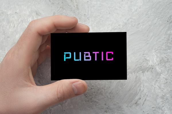 Sample branding #3 for Pubtic