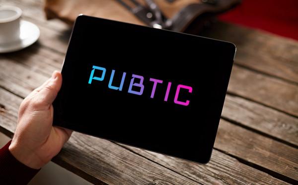 Sample branding #1 for Pubtic