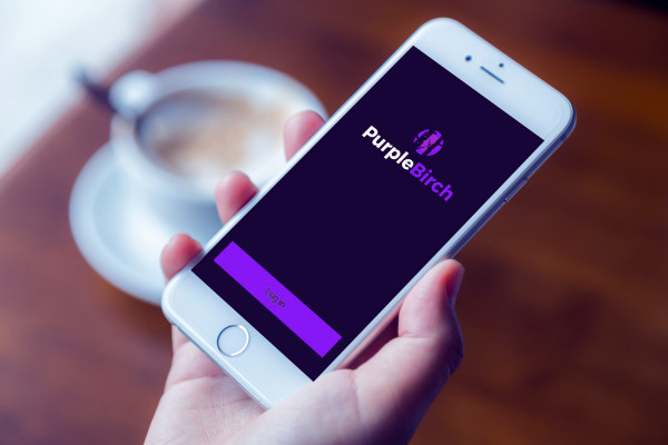 Sample branding #2 for Purplebirch