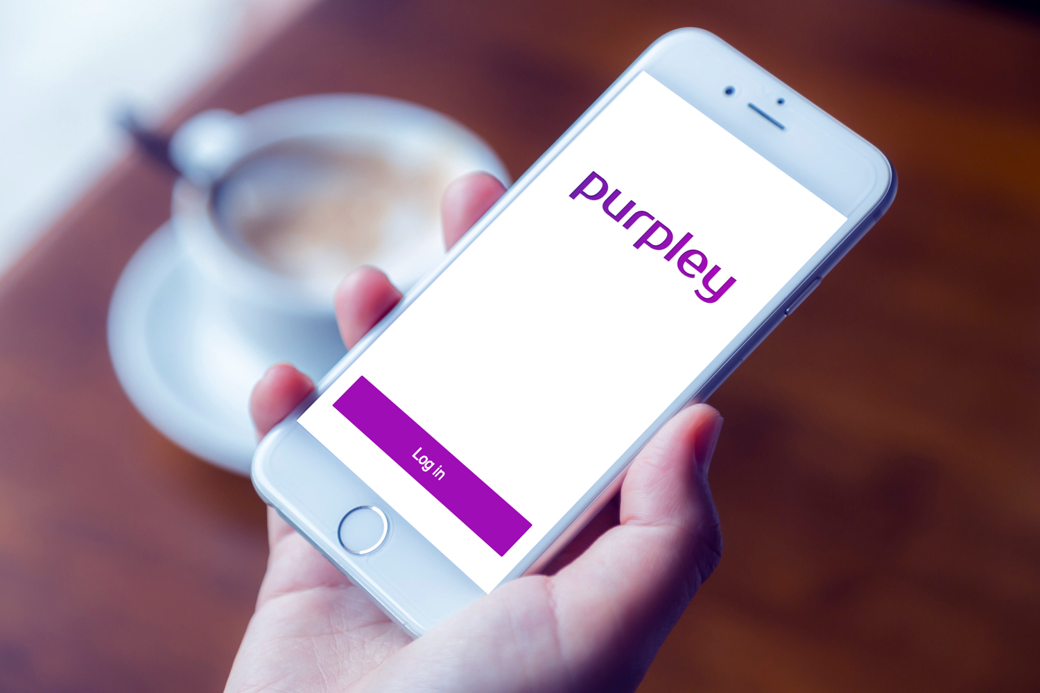 Sample branding #1 for Purpley