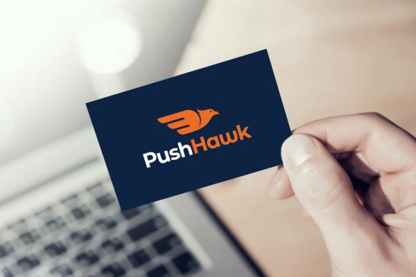 Sample branding #2 for Pushhawk