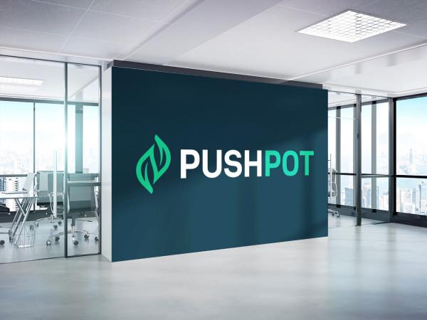 Sample branding #1 for Pushpot