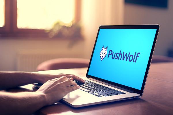 Sample branding #2 for Pushwolf