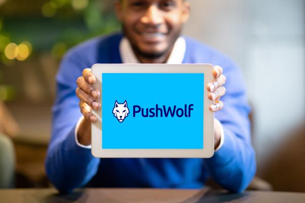 Sample branding #3 for Pushwolf