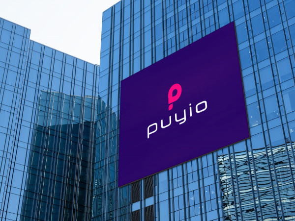 Sample branding #2 for Puyio