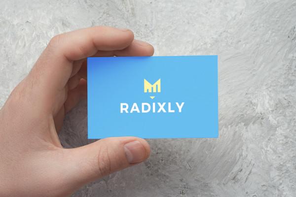 Sample branding #1 for Radixly