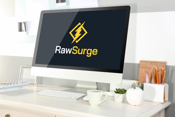 Sample branding #3 for Rawsurge