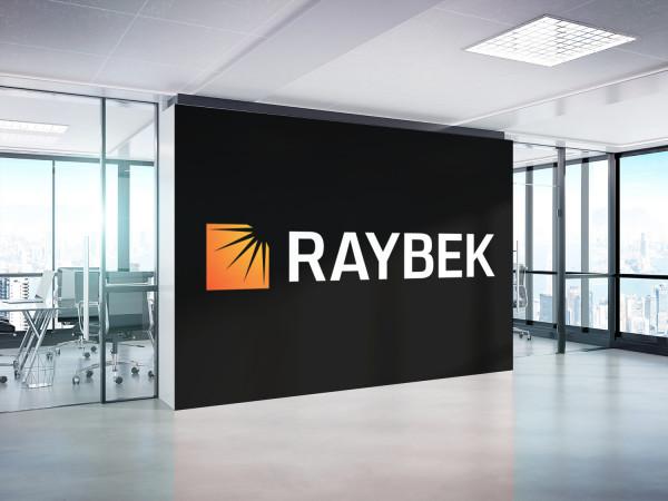Sample branding #3 for Raybek