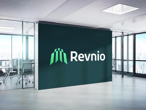 Sample branding #3 for Revnio