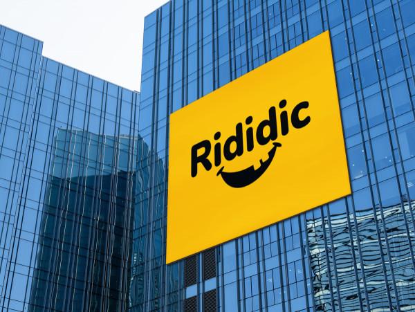 Sample branding #1 for Rididic
