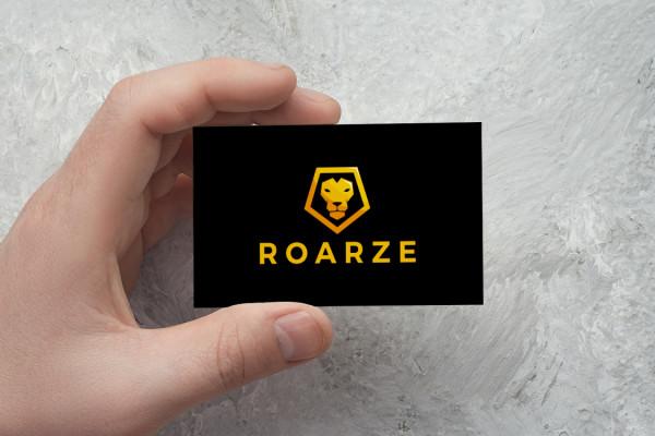 Sample branding #2 for Roarze