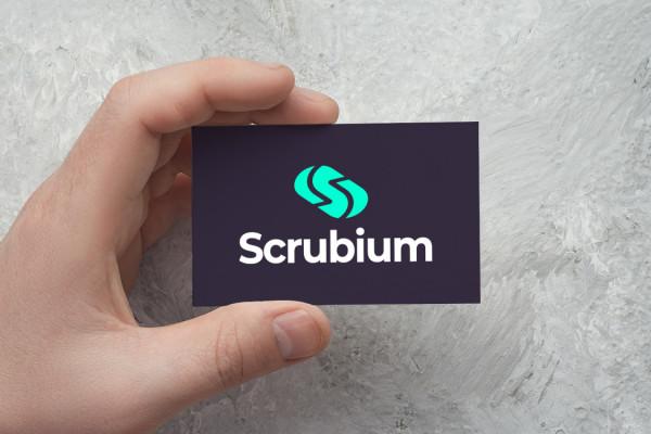 Sample branding #2 for Scrubium