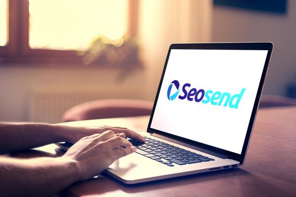 Sample branding #2 for Seosend