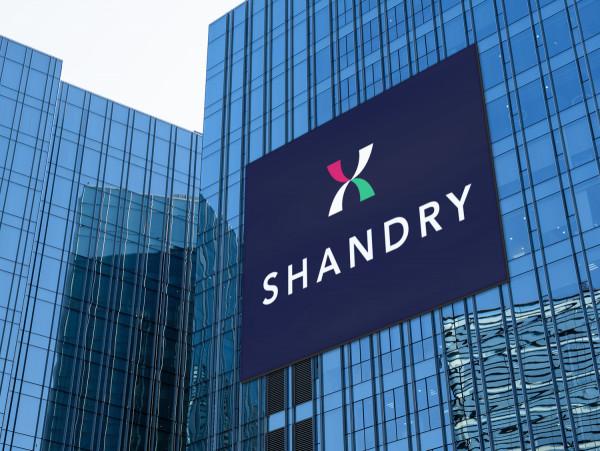 Sample branding #2 for Shandry