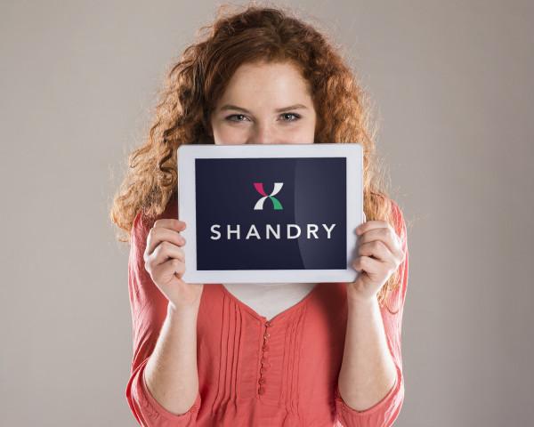 Sample branding #1 for Shandry