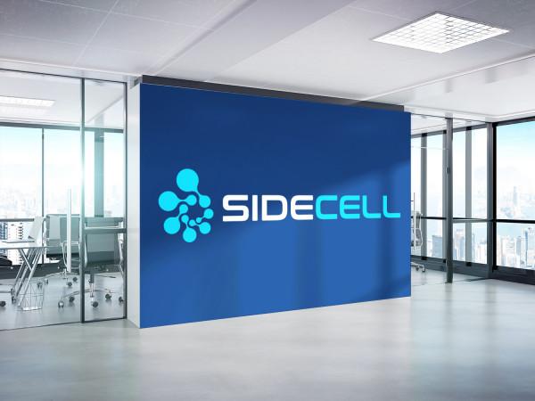 Sample branding #2 for Sidecell