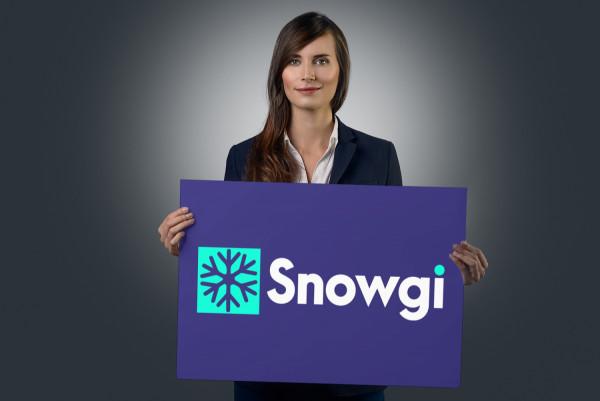 Sample branding #2 for Snowgi
