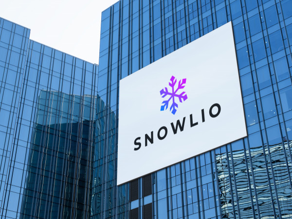 Sample branding #3 for Snowlio