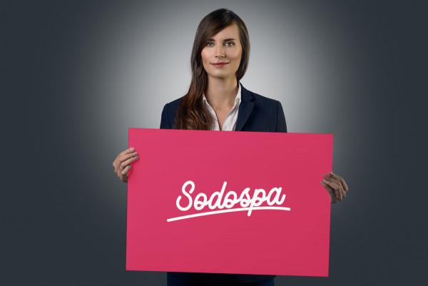 Sample branding #1 for Sodospa