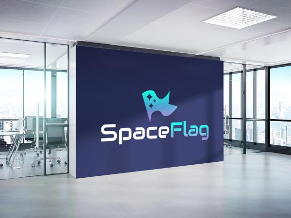 Sample branding #2 for Spaceflag