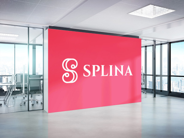 Sample branding #1 for Splina