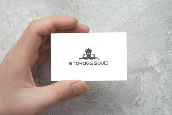 Sample branding #2 for Storagesquid