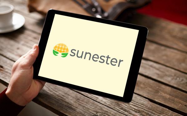 Sample branding #2 for Sunester