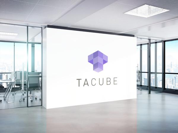 Sample branding #1 for Tacube