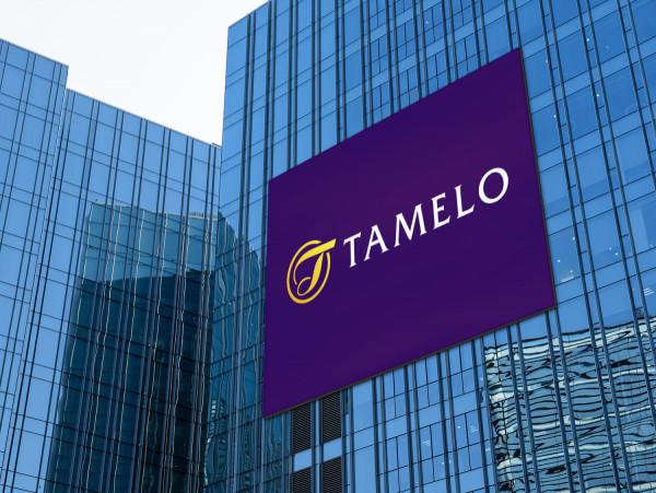 Sample branding #1 for Tamelo