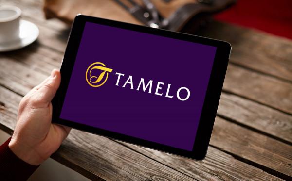 Sample branding #2 for Tamelo