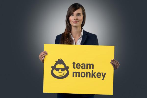Sample branding #2 for Teammonkey