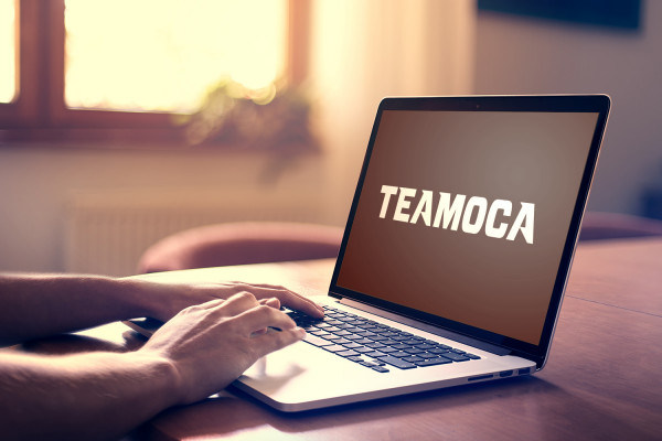 Sample branding #2 for Teamoca