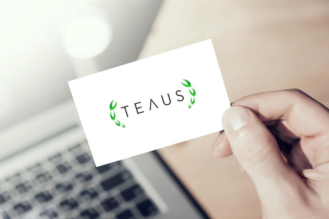 Sample branding #3 for Teaus