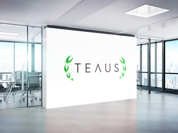 Sample branding #3 for Teaus