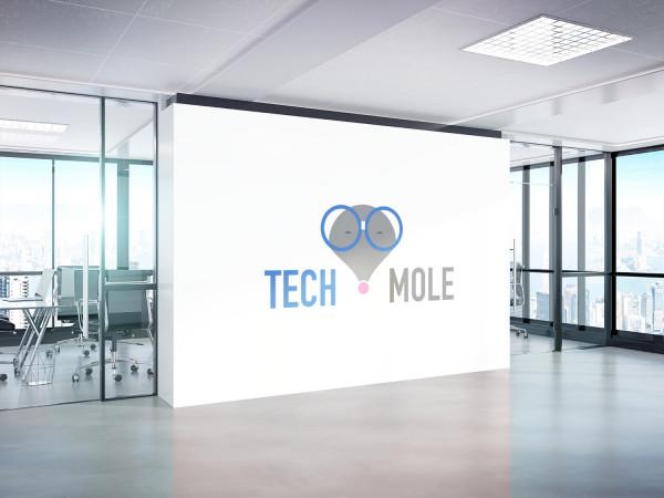 Sample branding #3 for Techmole