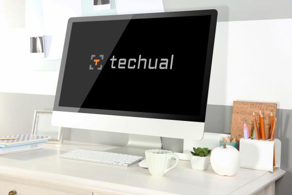 Sample branding #2 for Techual
