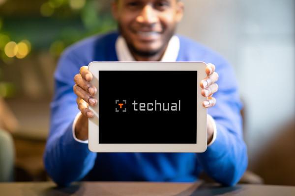 Sample branding #1 for Techual