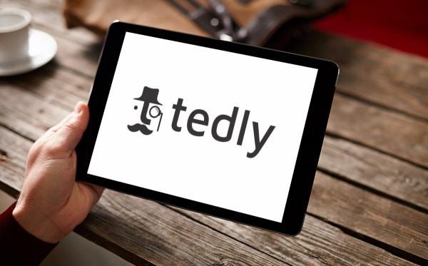 Sample branding #3 for Tedly