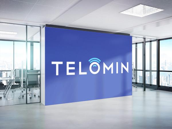 Sample branding #3 for Telomin