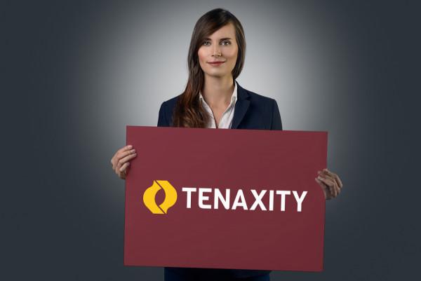 Sample branding #2 for Tenaxity
