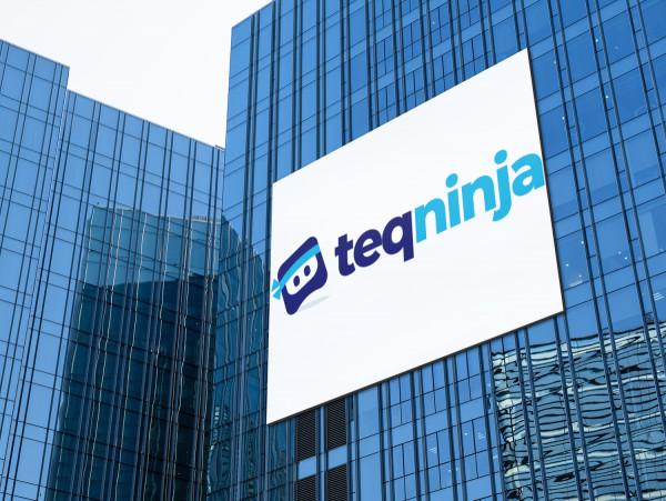 Sample branding #2 for Teqninja