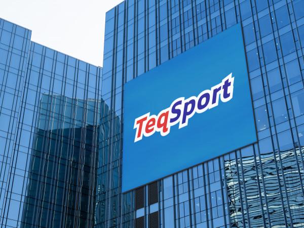 Sample branding #1 for Teqsport