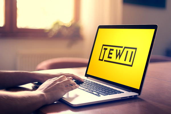 Sample branding #3 for Tewii